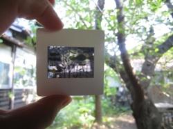 nanri4.jpg